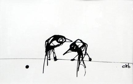 Crow908 (1)